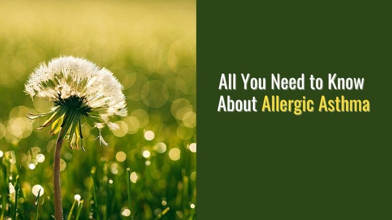 All You Need to Know About Allergic Asthma